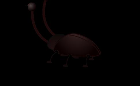 ゴキブリ-イラスト