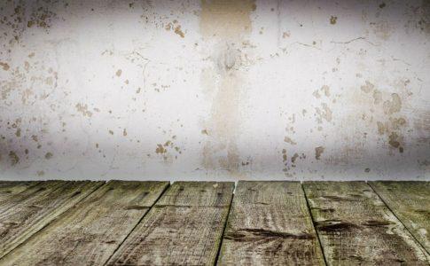 賃貸物件の傷だらけのフローリングと壁